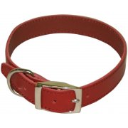 "Plain Leather Collar 1/2"" x 12""-14"""