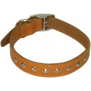 "Studded Leather Collar 3/4"" x 14""-16"""