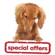 Special Offer Dog Products
