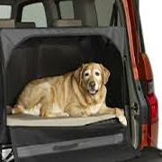 Car Travel Products for Dogs