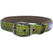 Dog & Co Padded Buckle Collar Green. 4 Sizes Available
