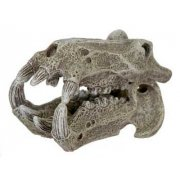 Exotic Locations Hippo Skull Ornament Small
