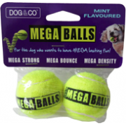 Dog & Co Mega Balls 2 Pack Small Mint/Peanut Butter Flavour