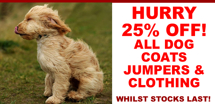 25% Off All Clothing