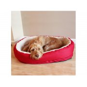 40 Winks Red Orthopedic Pet Bed