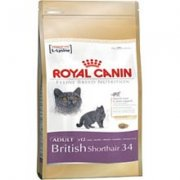 Royal Canin Cat British Shorthair 34 4kg