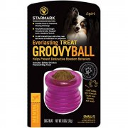 Everlasting Groovy Ball Dog Toy